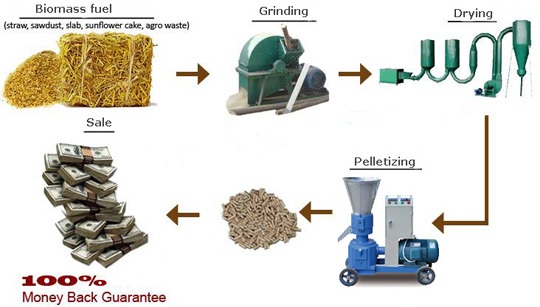advantages of biomass energy pdf