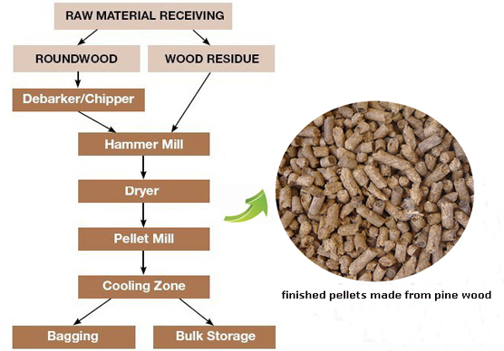 Experienced in processing pine wood pellets production