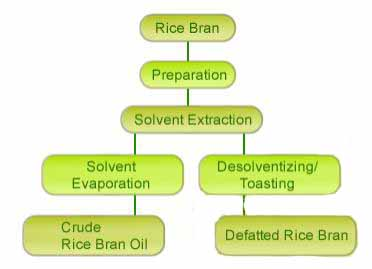 rice bran oil extraction process