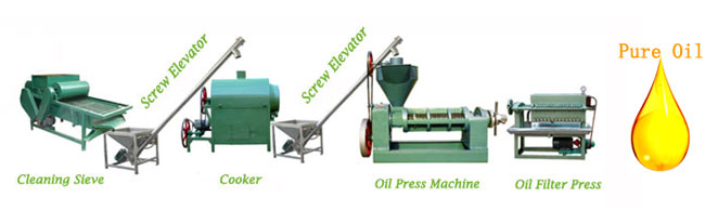 small scale oil mill plant